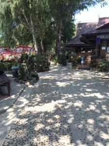Phi Phi Island walking